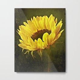 Petals Of A Sunflower Metal Print