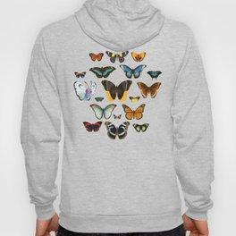 Entomology Vintage Butterfly Hoody