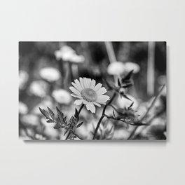 Singularity III - Black & White Metal Print