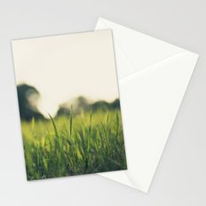 Summer eve grass Stationery Cards