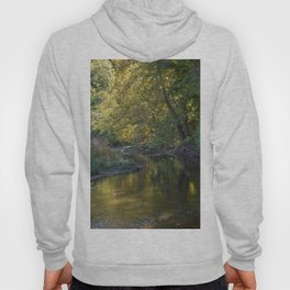 Where Canoes and Raccoons Go Series, No. 6 Hoody