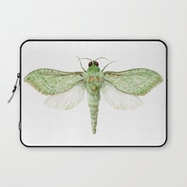 Pepe Tuna / Puriri Moth 2016 Laptop Sleeve