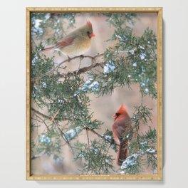 Winter Pair Cardinals (v) Serving Tray
