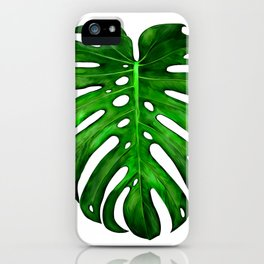 Monstera Leaf Paintings iPhone Case