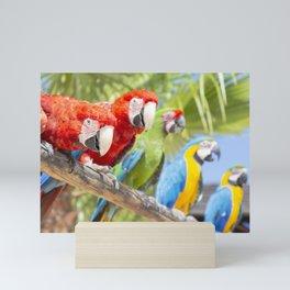 Curious macaws Mini Art Print
