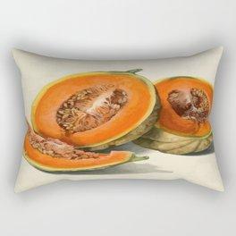 Vintage Vector Style Thanksgiving Pumpkin Slices  Rectangular Pillow