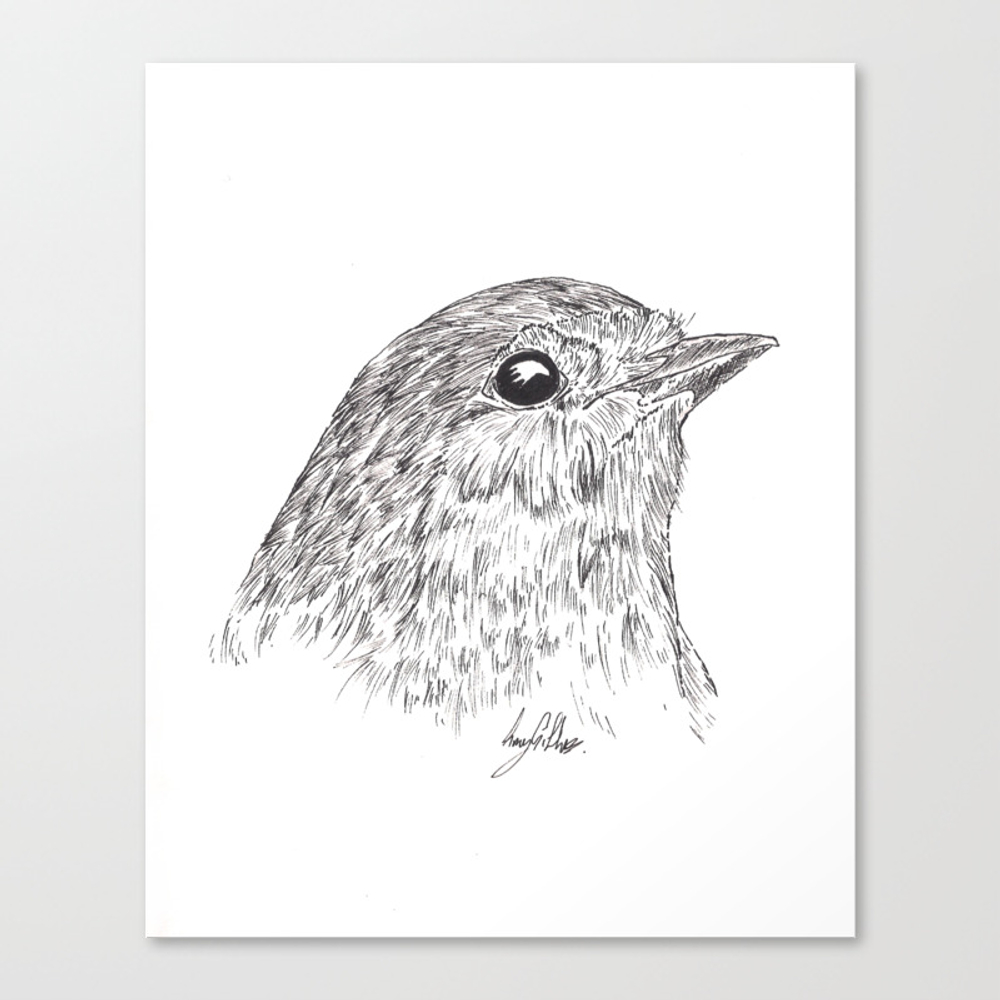 Robin Redbreast Canvas Print by Gillifish (CNV8878248) photo