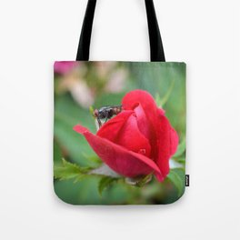 Fly on Knockout Tote Bag