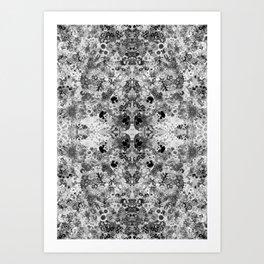 Florilegium 003 Art Print