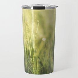 Green Barley Hay Growing on Summer Field Travel Mug