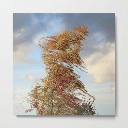 Windy Day Metal Print
