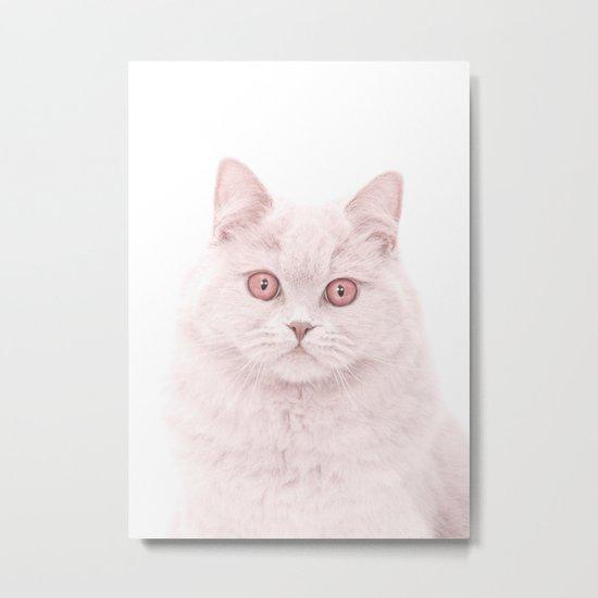 cat 4 Metal Print