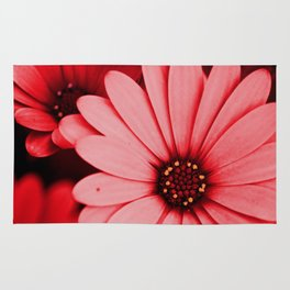 Red Daisy Rug