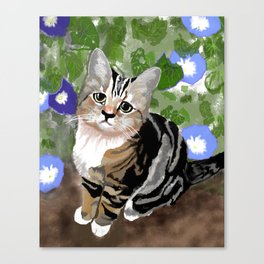 Stewie - The First Kitten Canvas Print