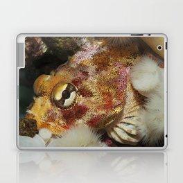 Red Irish Lord Laptop & iPad Skin