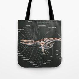Tylosaurus Pembinensis Skeletal Study Tote Bag