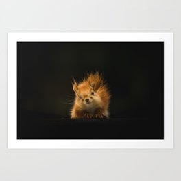 squirrel #decor #buyart #society6 Art Print