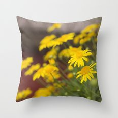 Summer in Provence Throw Pillow