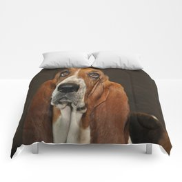 Lost In Thought Basset Hound Dog Comforters