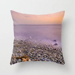 Dried leaves at the sea sunset Throw Pillow