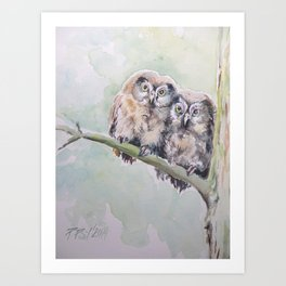 TWO CUTE OWLS Wildlife birds in the forest Watercolor painting Art Print
