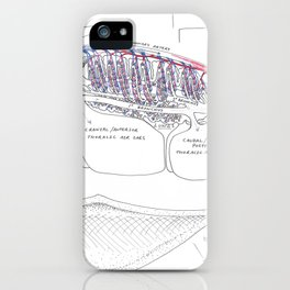 Avian Respiratory System, lateral view iPhone Case