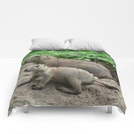 Prairie dogs 04 Comforters