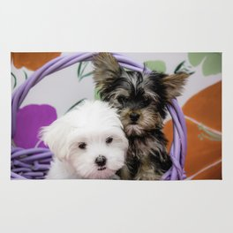 Maltese Puppy and a Yorkshire Terrier Puppy Cuddling in a Purple Basket with Flower Background Rug