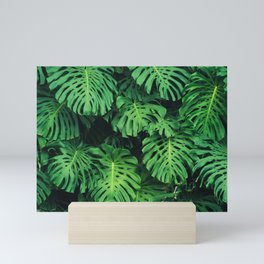 Monstera leaf jungle pattern - Philodendron plant leaves background Mini Art Print