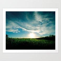 Grassy Sun Set Art Print