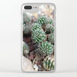 Tiny Cacti on Rocks Clear iPhone Case