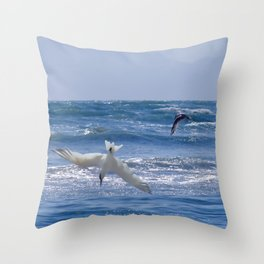 Terns diving into the ocean Throw Pillow