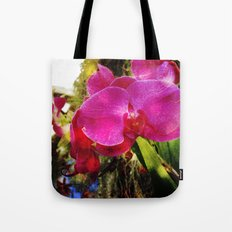 orchids3 Tote Bag