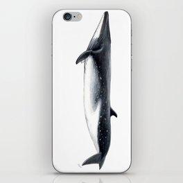 Bryde´s whale iPhone Skin