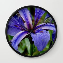 Stunning Microcosm Wall Clock
