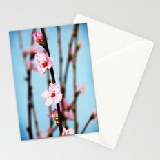 Pretty Pink Peach Petals Stationery Cards