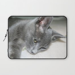 Close Up Of A Grey Kitten Laptop Sleeve