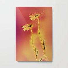 two yellow and red Daisies Metal Print