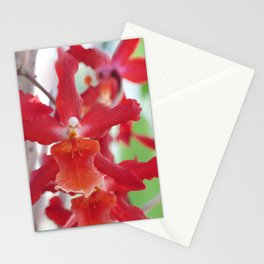 Exquisite Epidendrum Orchids Stationery Cards
