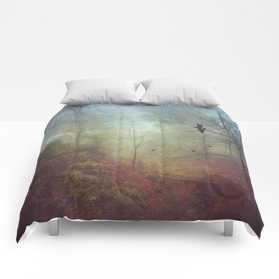Nov 13th Comforters