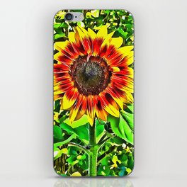 To Be A Sunflower iPhone Skin