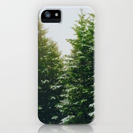 Winter Pine Tree Forest (Color) iPhone Case