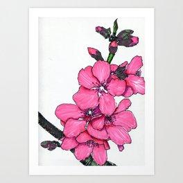 Pretty Peachy Art Print