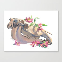 Horse Skull and Flowers Canvas Print