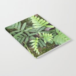 Moss and Fern Notebook
