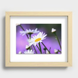 Exit 17 daisy * purple is the color of love Recessed Framed Print