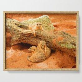 Meerkat Trio Serving Tray