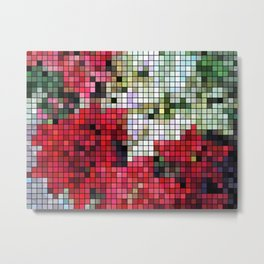 Mixed color Poinsettias 1 Mosaic Metal Print