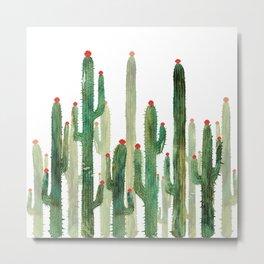 Cactus 3 Metal Print