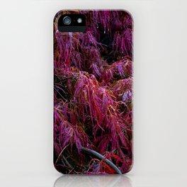 Crimson Queen iPhone Case